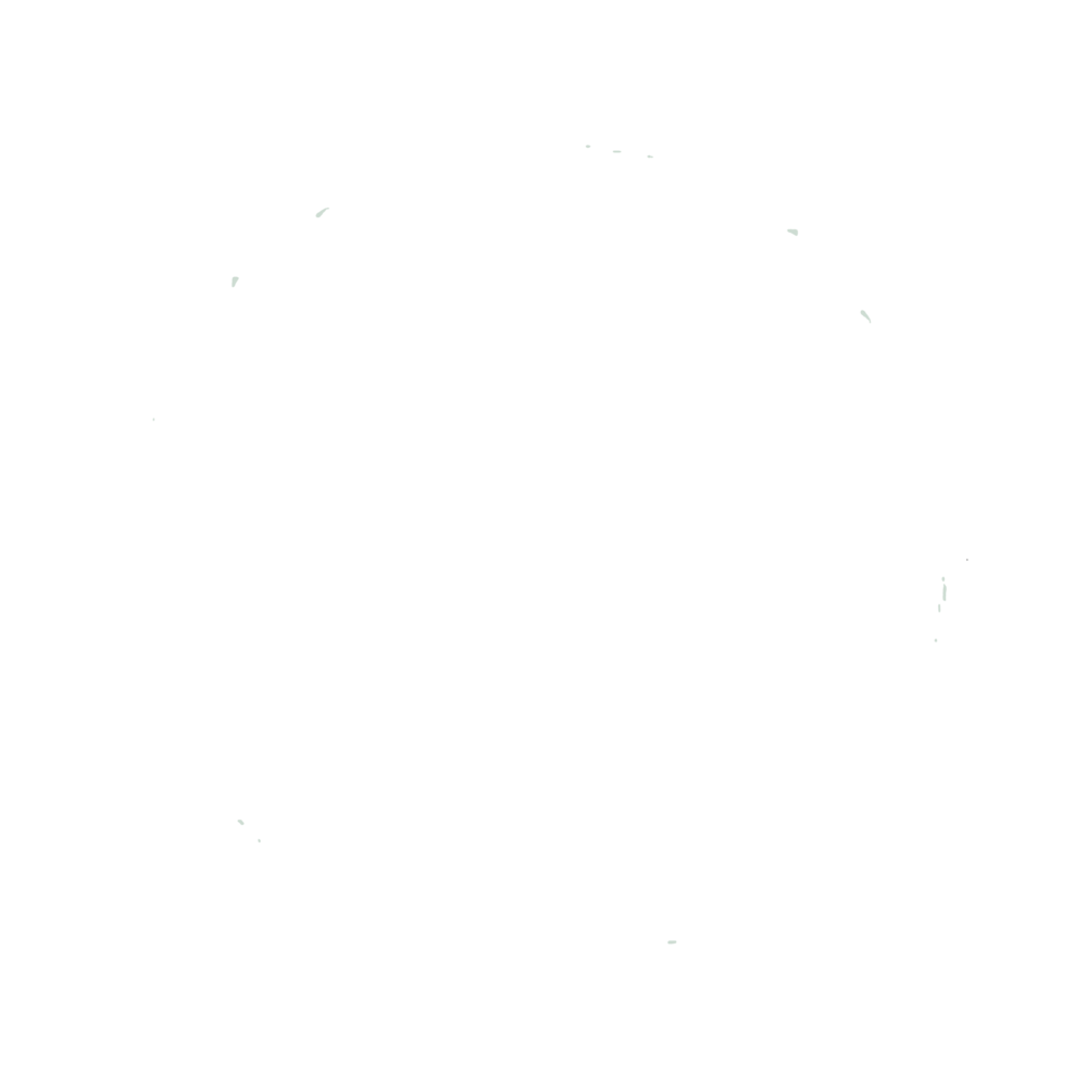 connectbodymindspirit.png
