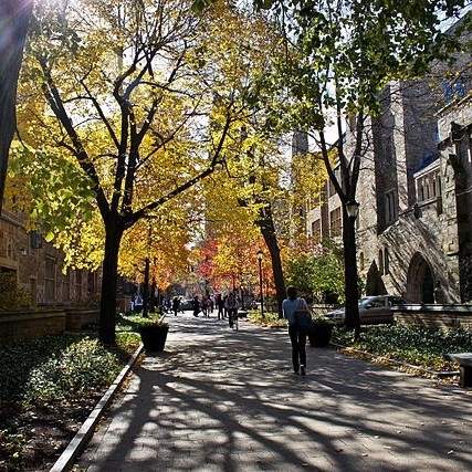 Yale_University_Cross_Campus_2_wikimedia.jpg