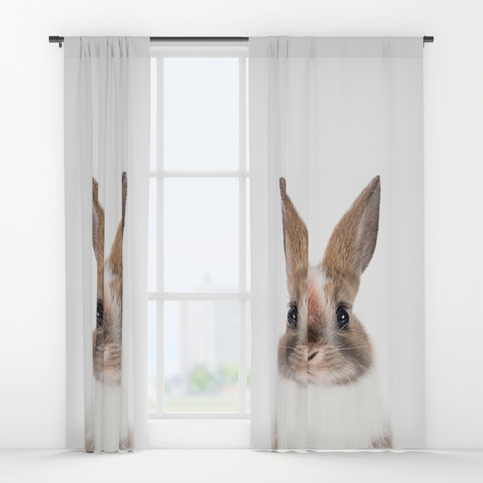 bunny935902-curtains.jpg