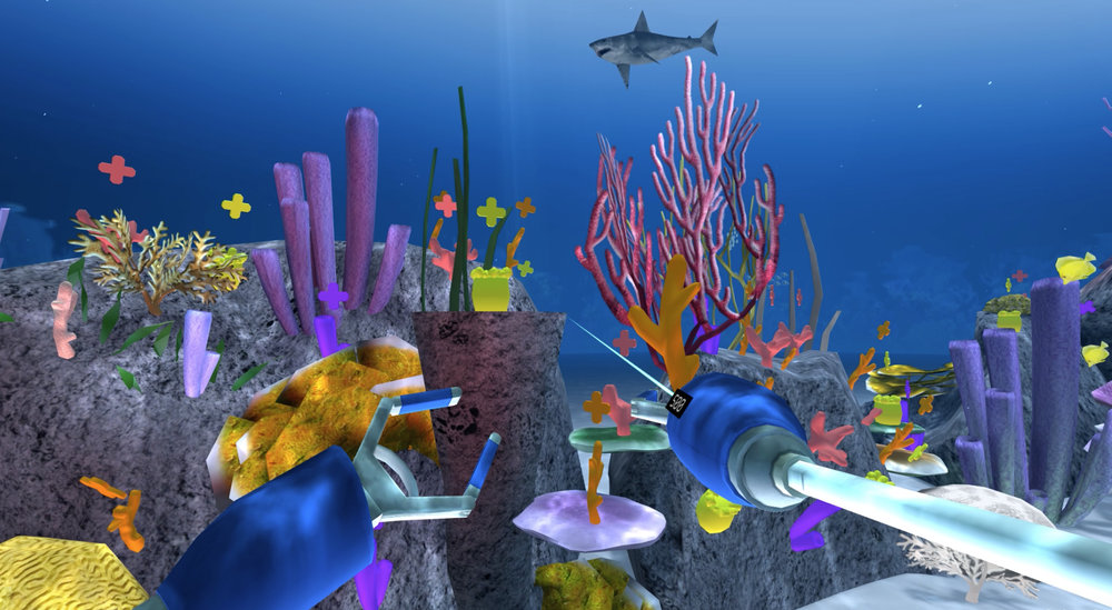 CoralPlanting1.jpg