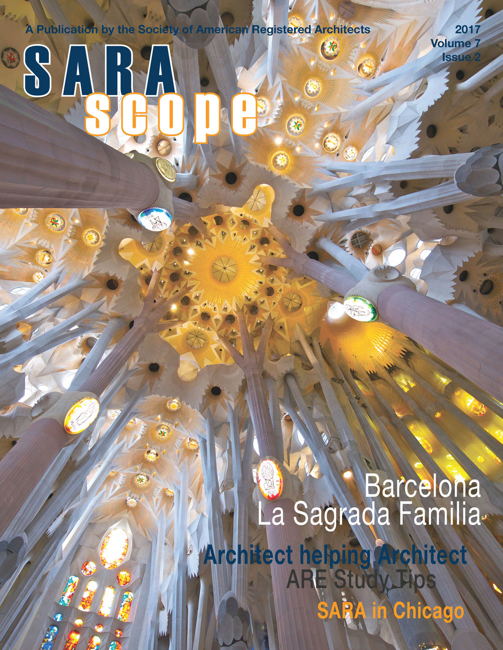 Latest Issue: 2-2017 - Download Issue 2-2017 of SARAscope here.