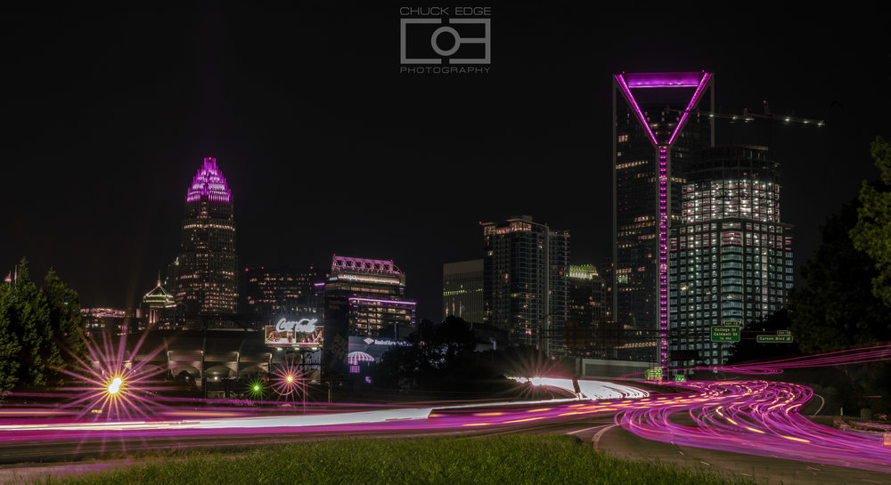 Charlotte pink 01.jpg
