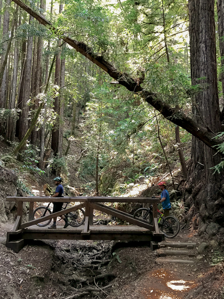 mountain bike santa cruz.jpg