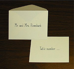 "Option E - Name on Envelope and ""Table Number __"" on card"