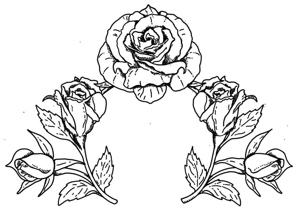 Wreath 36