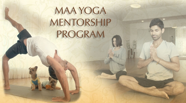 mentorship at maa -
