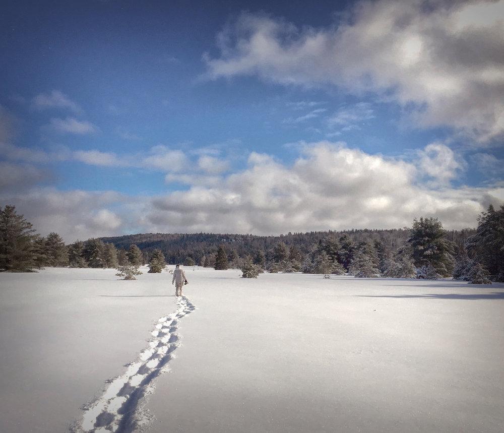 Winter Activities - Across the Blue Planet