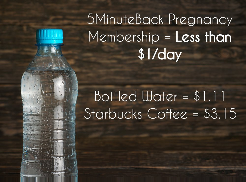 5MinuteBack Pregnancy - Less than $1 a day