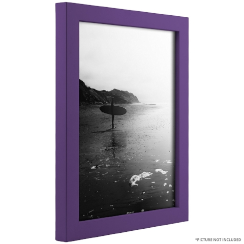 Pantone frame.jpg