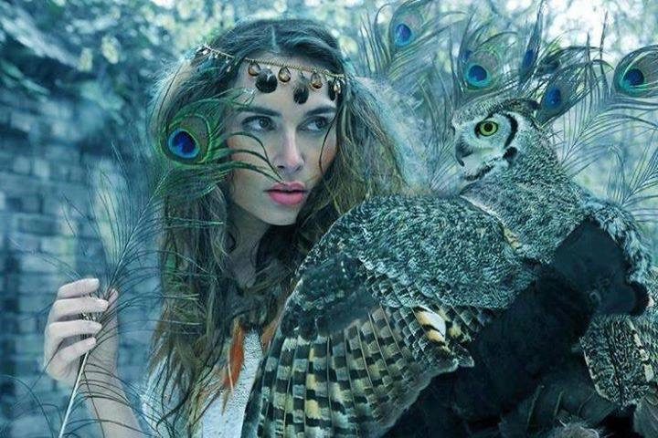 Wise owl woman.jpg