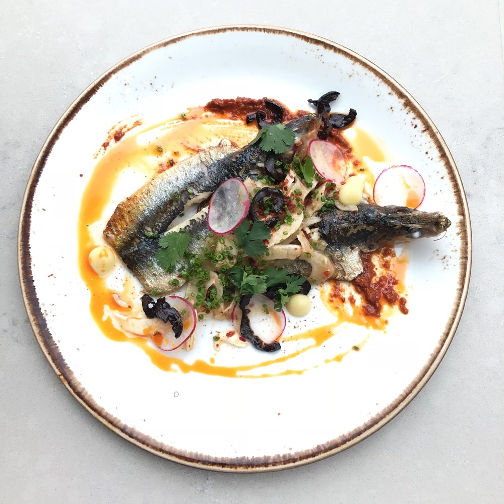 Sardines • Radish • Harissa
