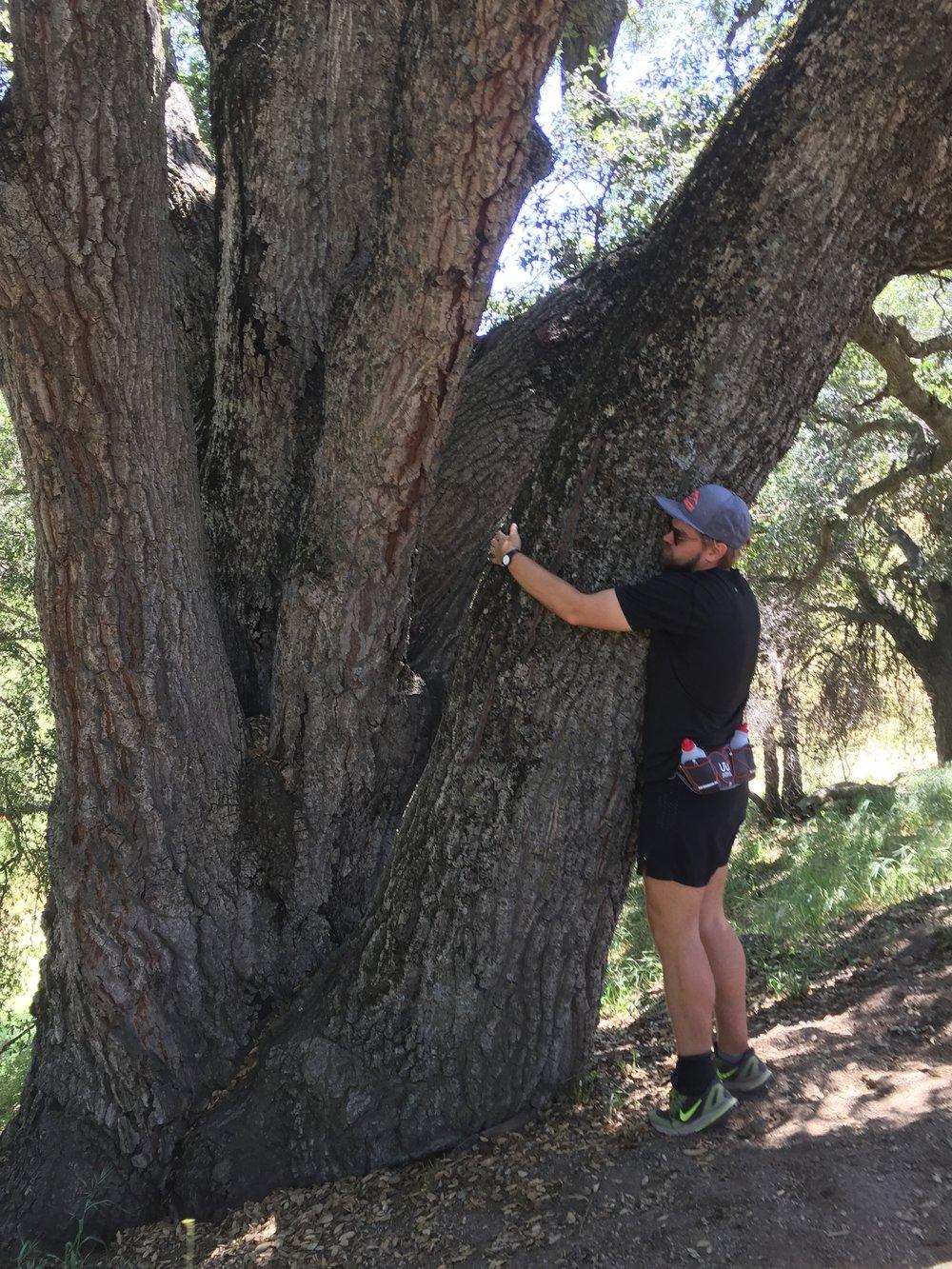 Tree huggin trail angel Ian