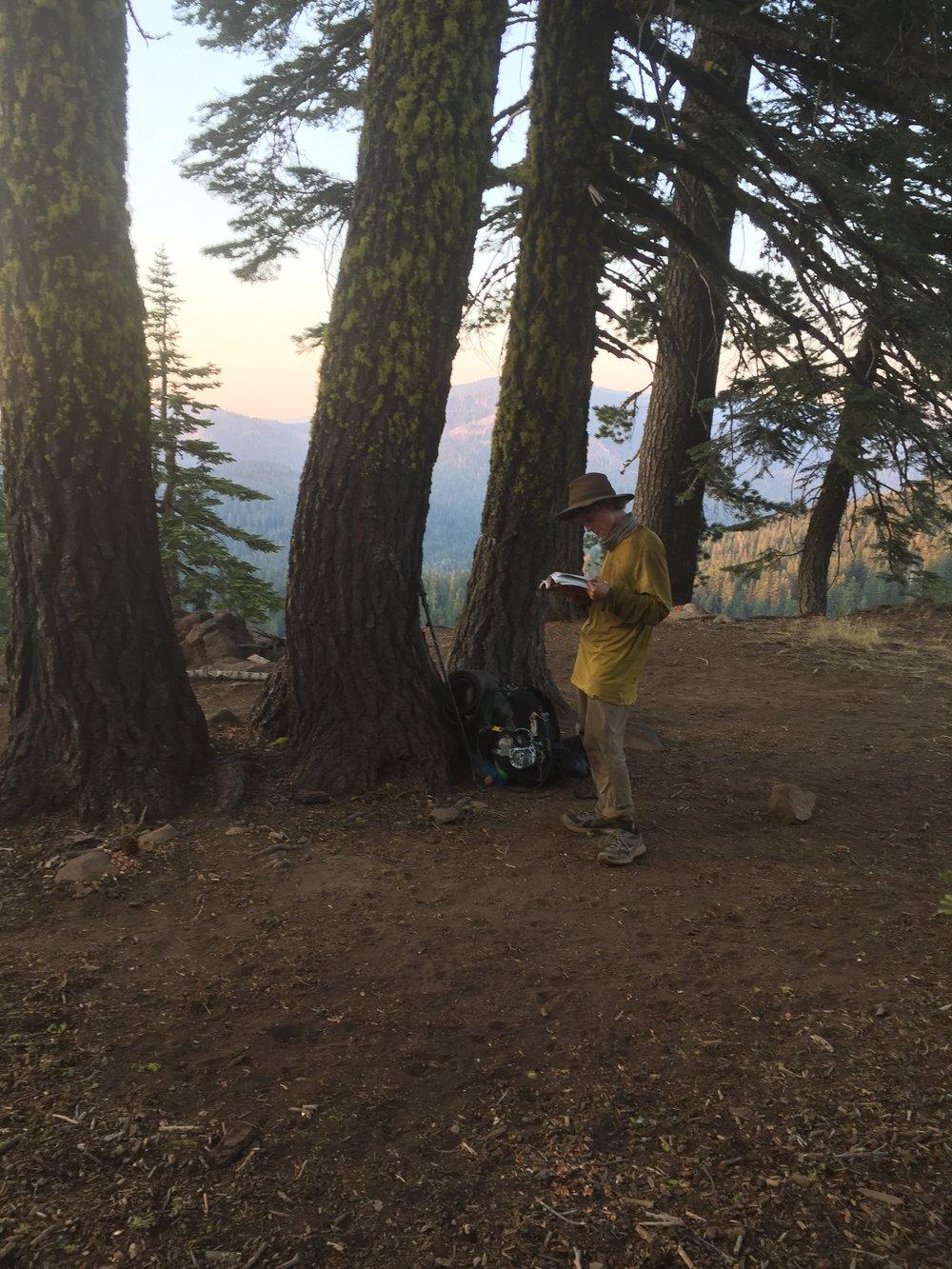 Mellow Yellow at camp