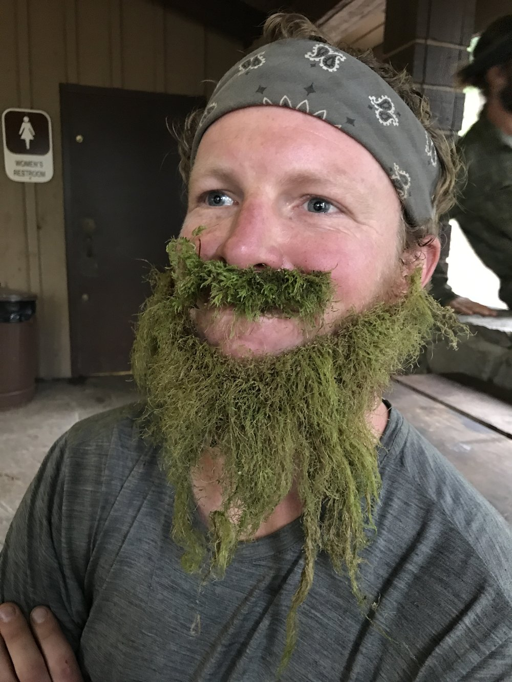 Link in a lichen beard
