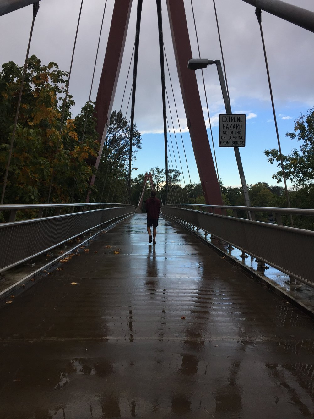 Cosmo walking over one of the bridges leading into a city park