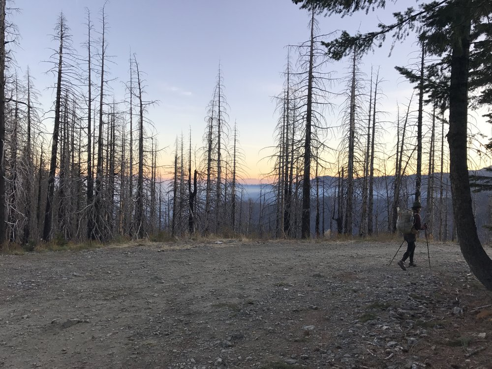 Morning sunrise in Marble Mountain Wilderness