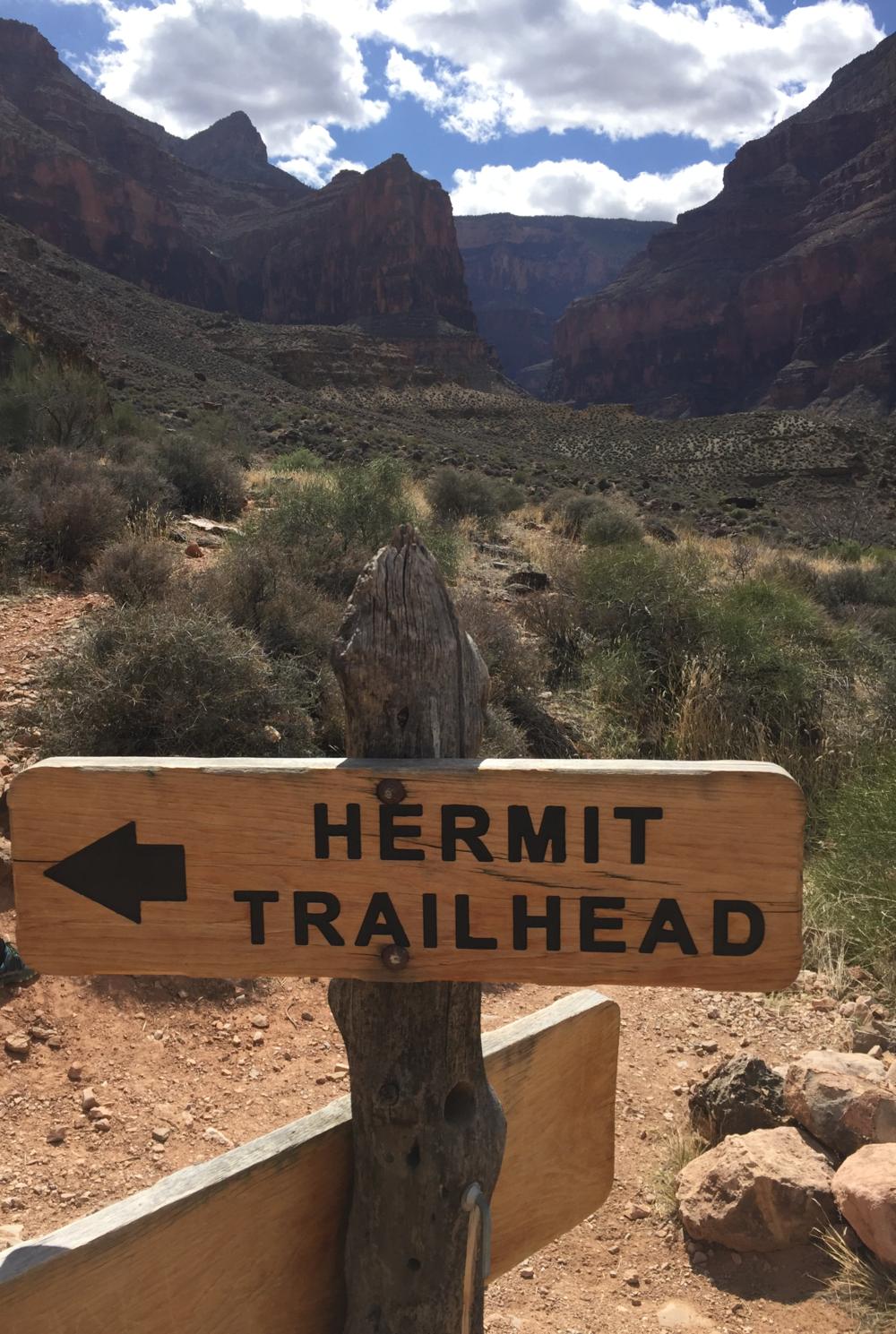 hermit th.jpg.png