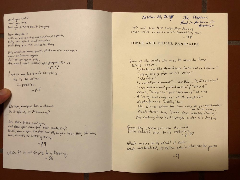 Note after note of all the beautiful things that go from Mary Oliver's mind to her pen.