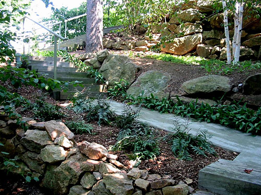 garden-06 (woodland garden path with ferns).JPG
