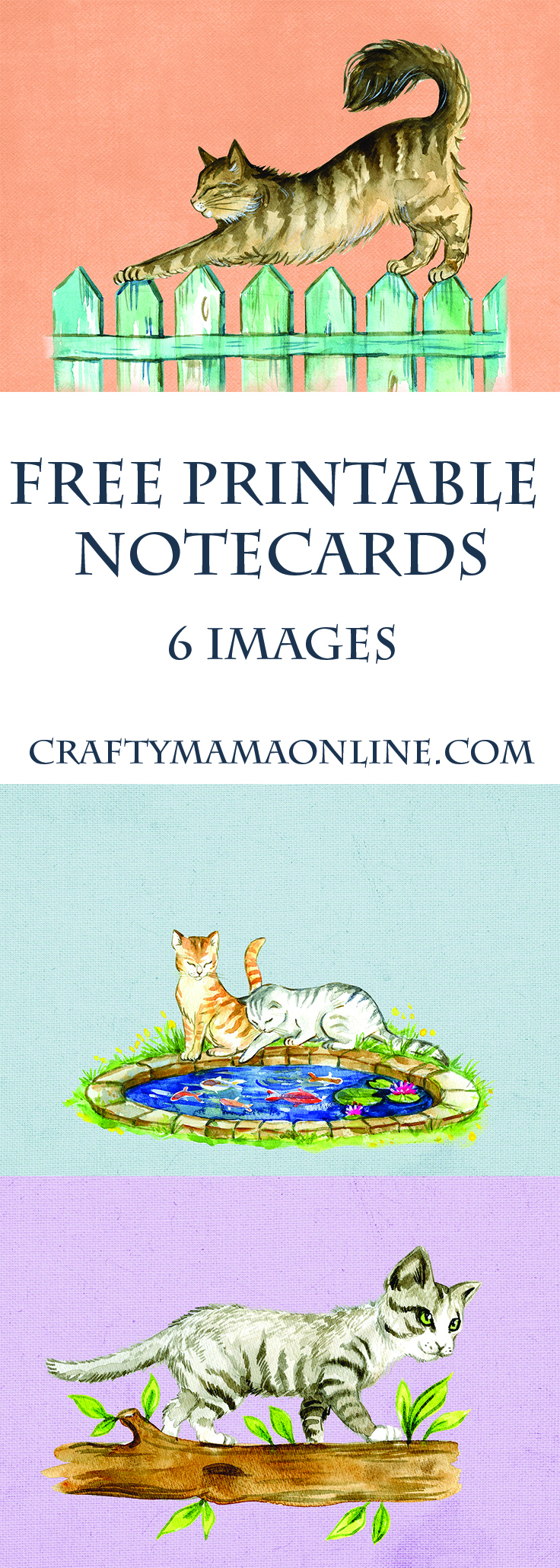 cat notecards pinterest.jpg