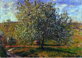 Claude Monet, Tree In Flower Near Vetheuil, 1879.  Image Source