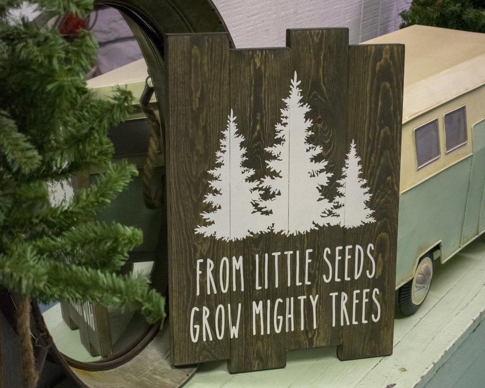 little seeds2.jpg
