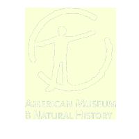 AmericanMuseumofNaturalHistory.png
