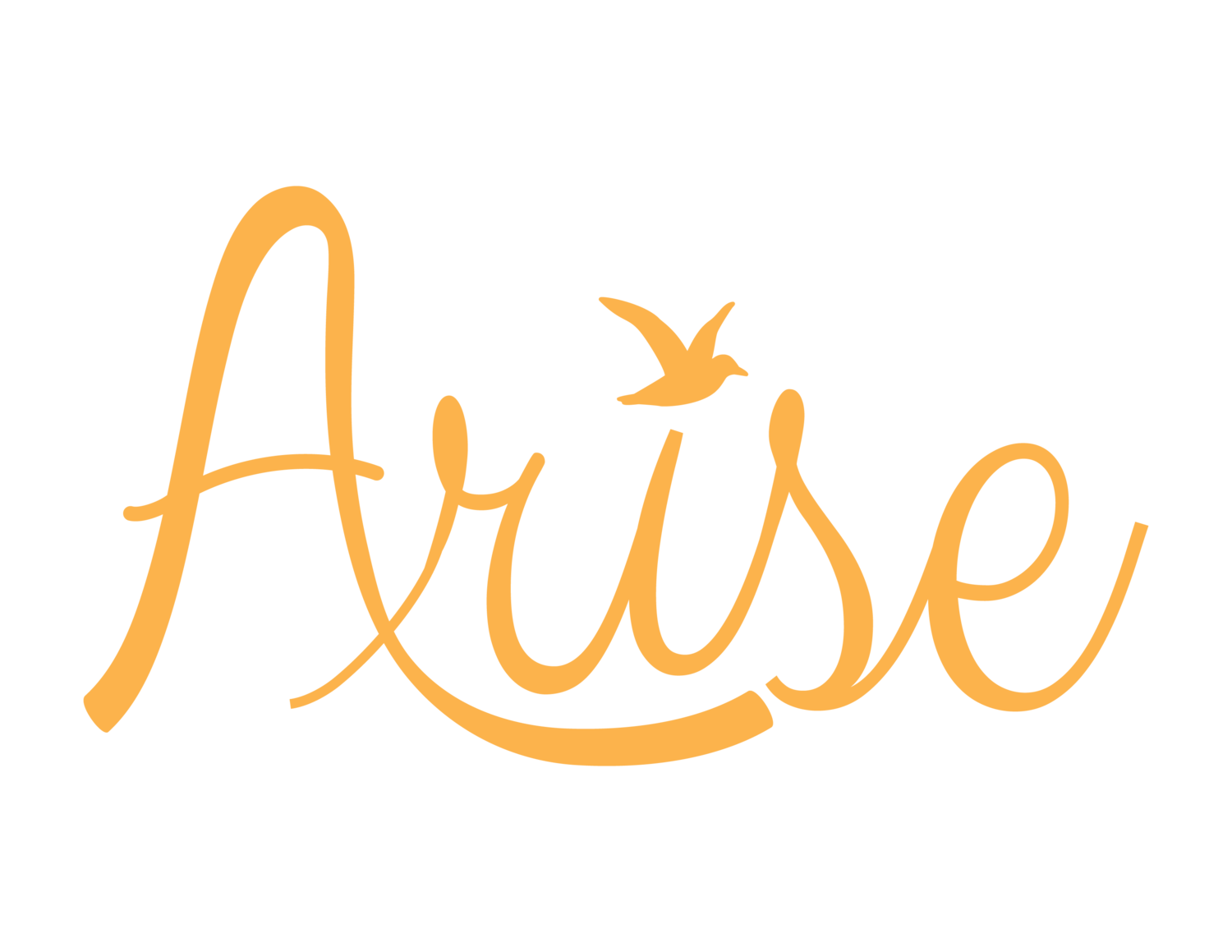 The Arise Box