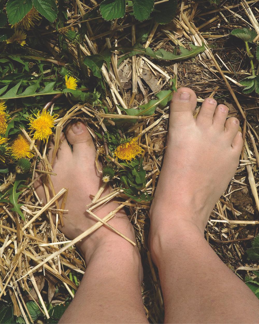 Dandilion feet.jpg