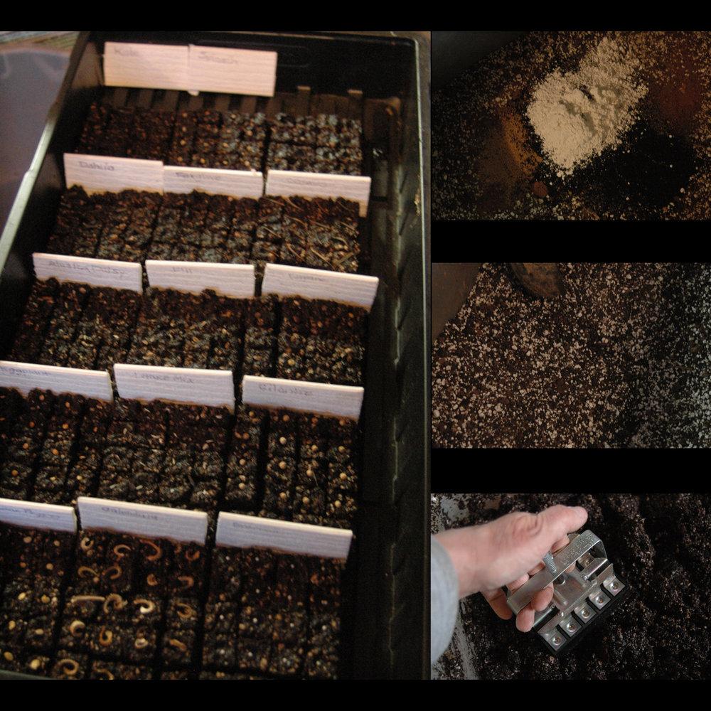 Soil block collage.jpg