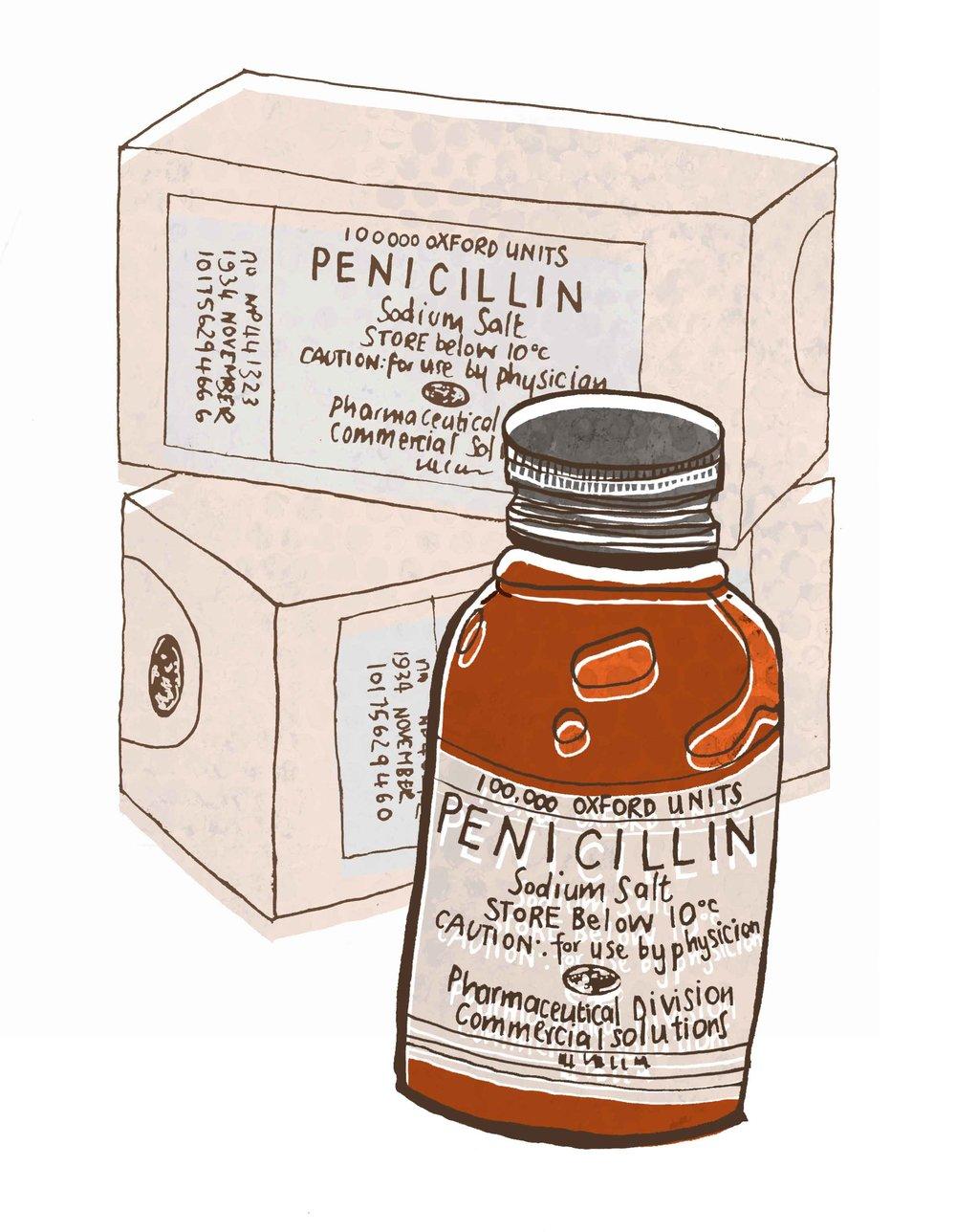 merged-penicillin.jpg