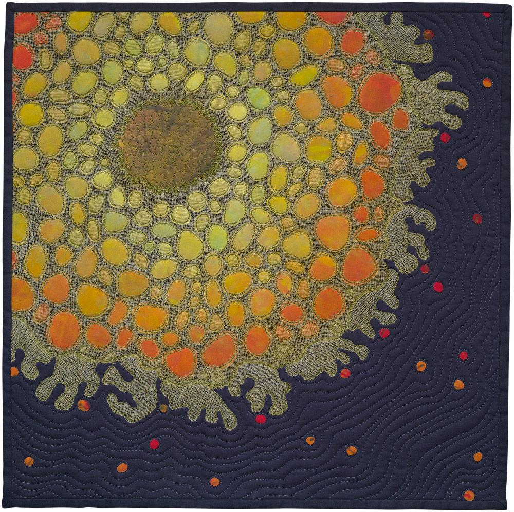 """Lichen 1 , art quilt, 2013, 18"""" x 18"""""""