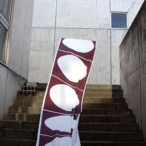 """""""Looking Through"""", 2009, Cotton with reactive dye, W54inch x 10yards"""