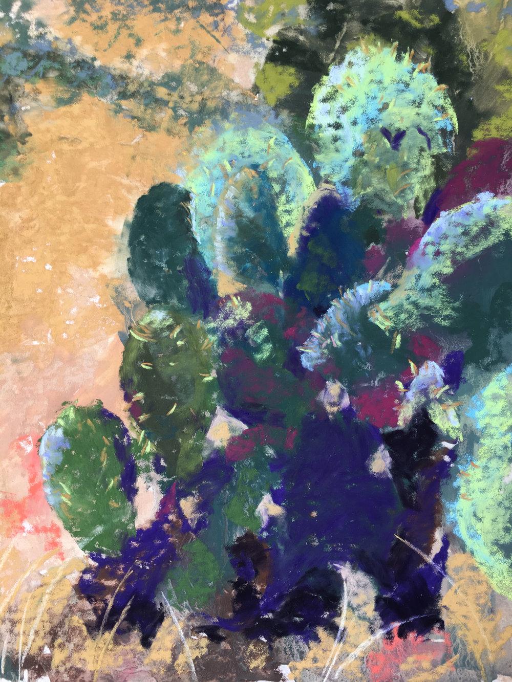 Barbara Naeser - b_naeser.jpg cactus.jpg