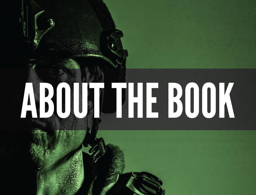 aboutthebook.jpg