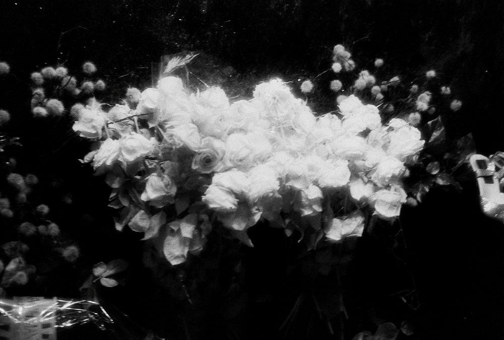 Shot on Infrared film