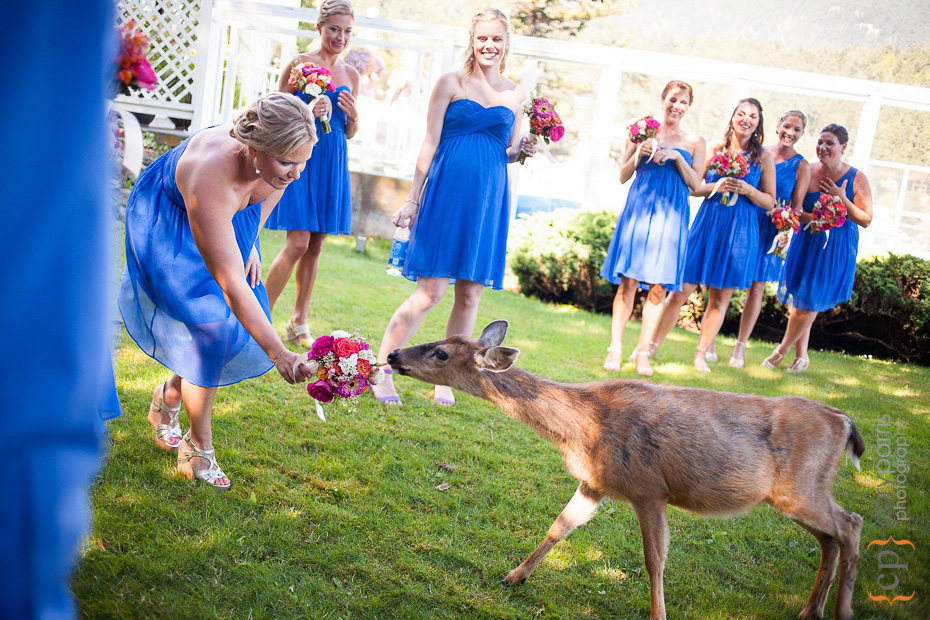 106-rosario-resort-wedding-orcas-island