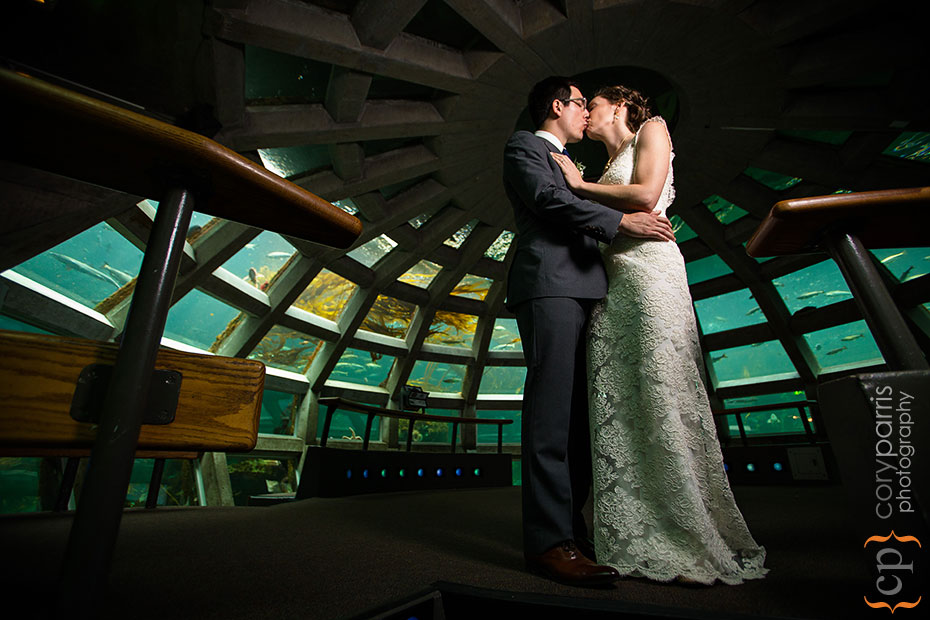 wedding portrait in the seattle aquarium