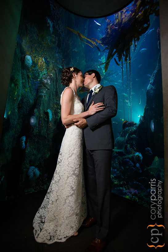 Wedding photography at the Seattle Aquarium