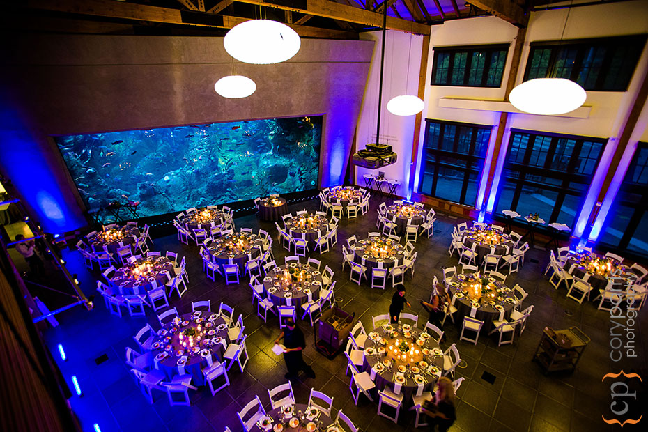 wedding reception setup at Seattle Aquarium