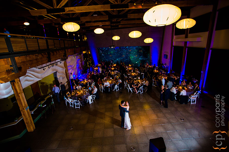 first dance at the Seattle Aquarium