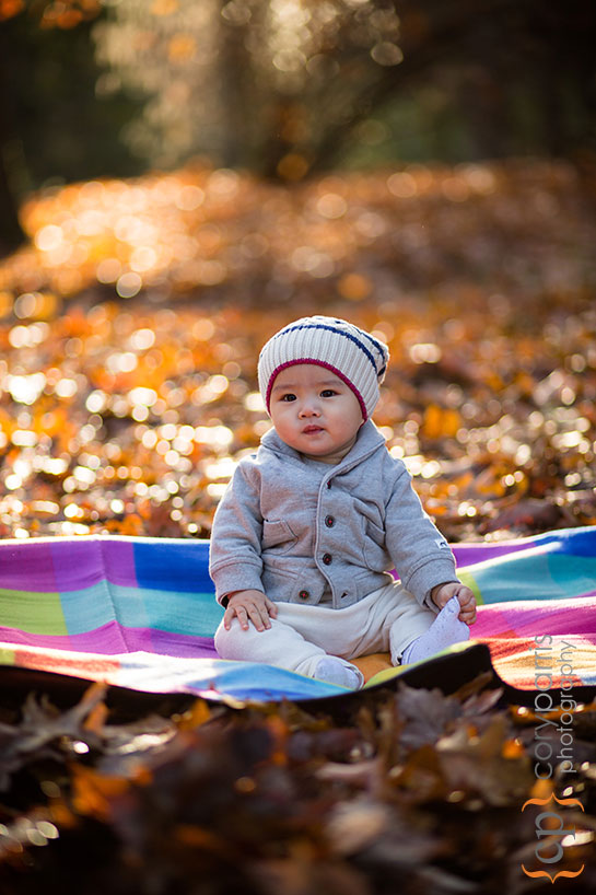 baby portrait in the fall leaves