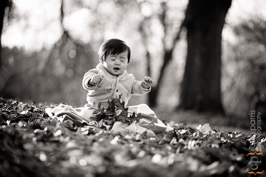 baby portrait at the washington park arboretum