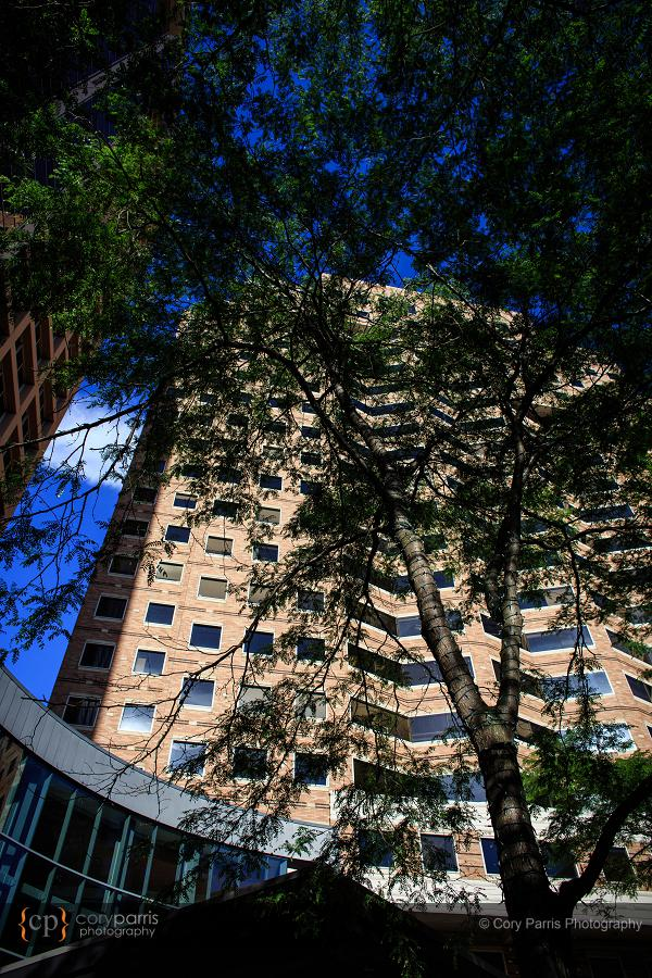 Bellevue Hyatt Sanjeet