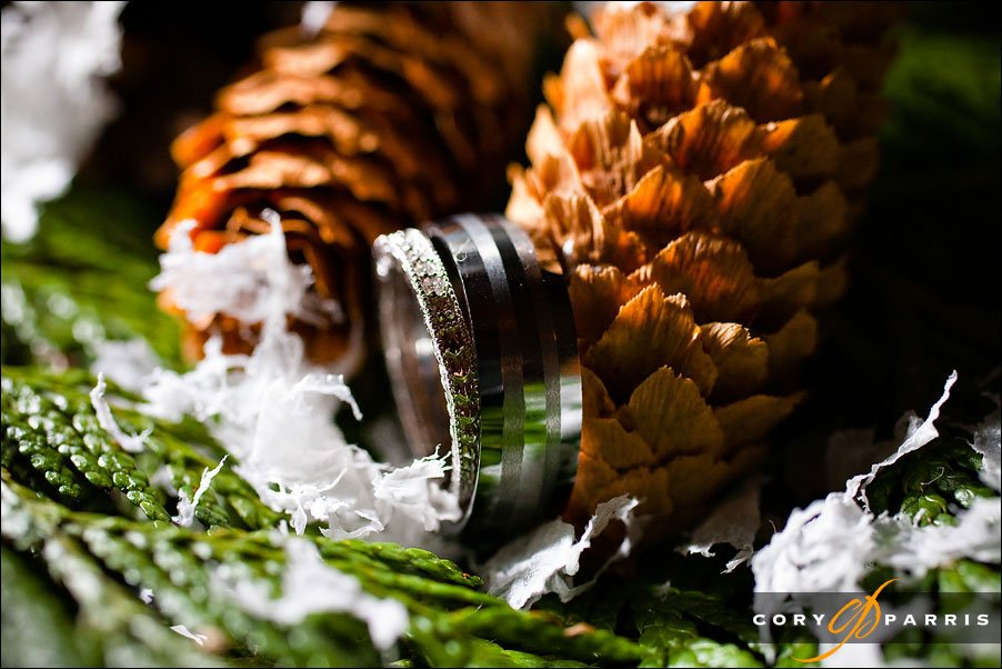 Rings and pine cones - winter wedding