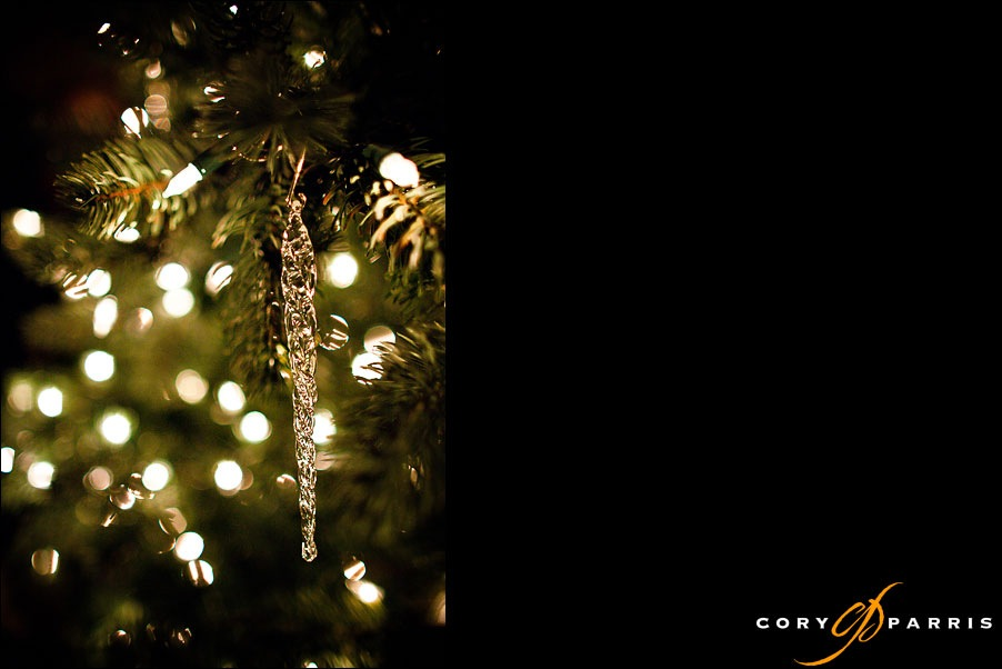 holiday ornaments with a 24 1.4 canon lens by seattle wedding photographer cory parris
