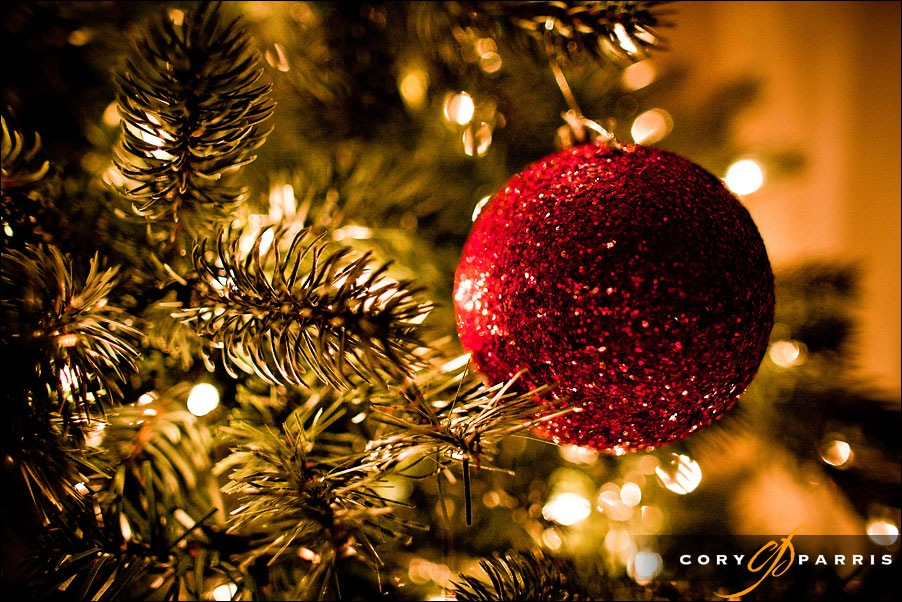 tree by seattle wedding photojournalist cory parris red ball holiday christmas ornament