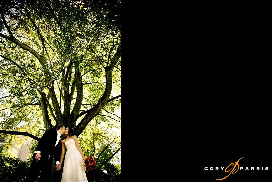 couple kissing beneath a tree by seattle wedding photographer cory parris