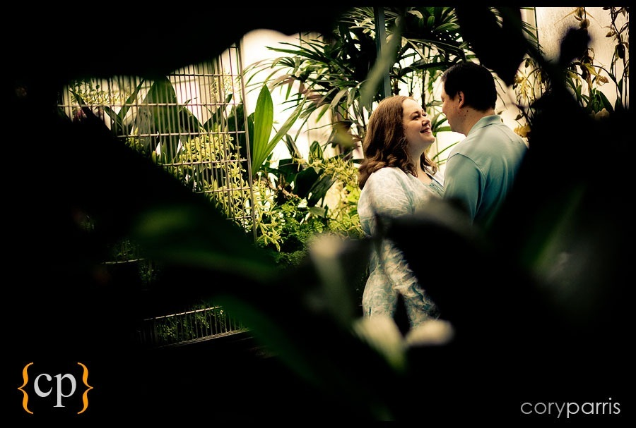 engagement portrait by seattle wedding photographer cory parris at the volunteer park conservatory