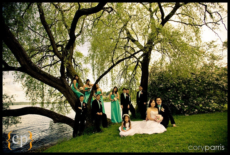wedding party under a tree next to lake washington by seattle wedding photgrapher cory parris